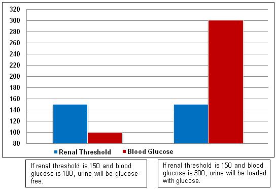 Glucosuria Chart: Renal Threshold versus Blood Glucose