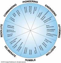 Circular Model for DiSC 360 Feedback Profile