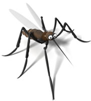 The HIV virus cannot survive in the mosquito.