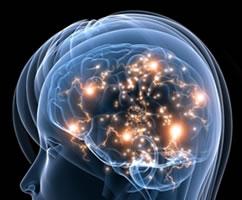 Lewy Bodies and Brain Disease