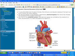 Online Medical Terminology Screenshot