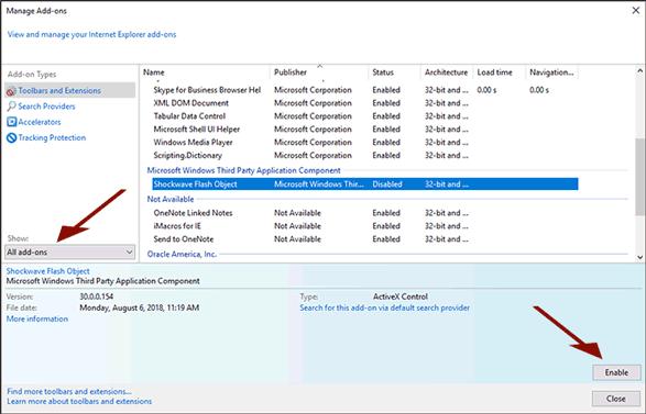 Internet Explorer Flash Settings