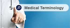 Search Medical Terminology FAQs